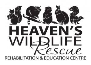 Heaven's Logo - Dec 2014